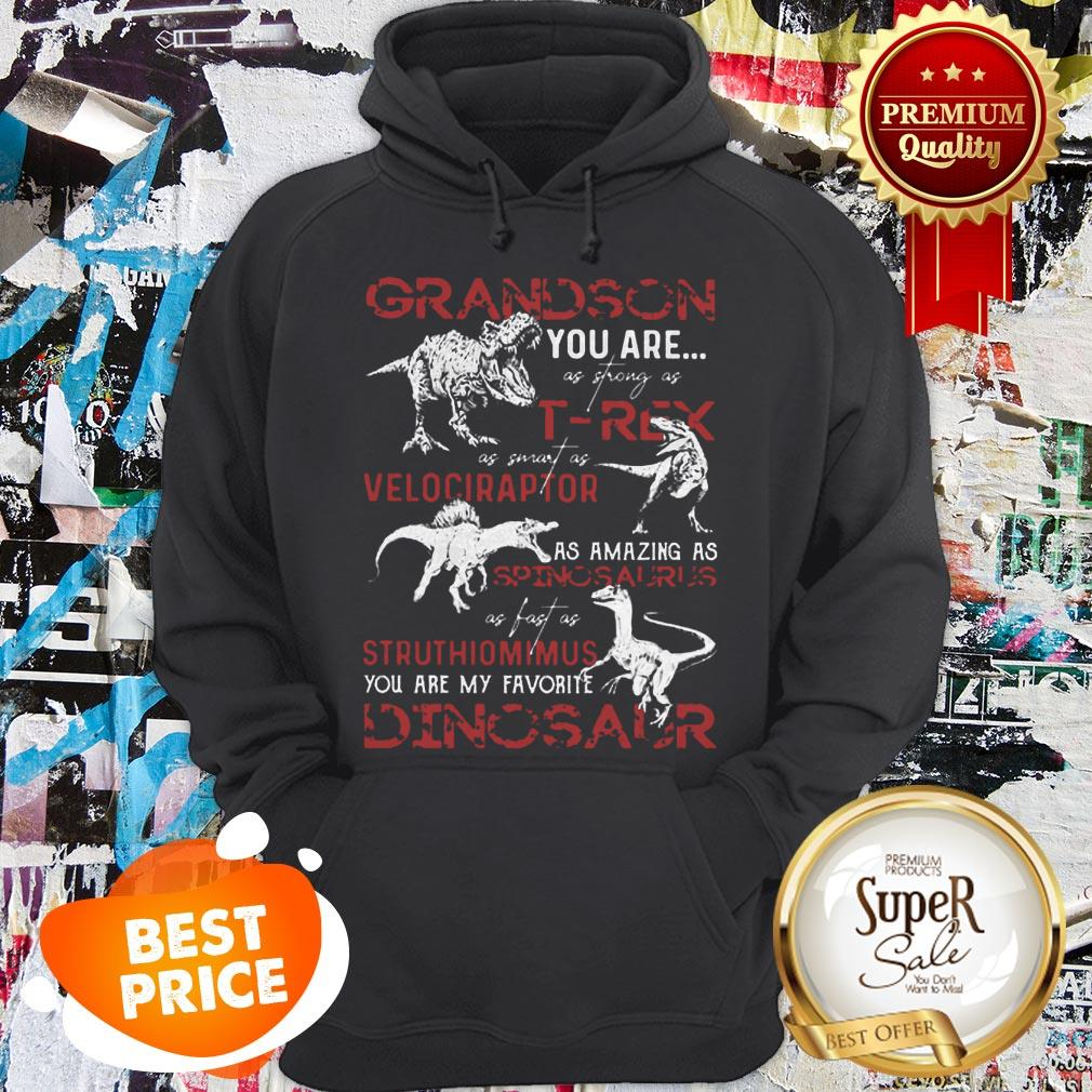 Nice Grandson You Are As Strong As T-Rex As Velociraptor Spinosaurus Hoodie
