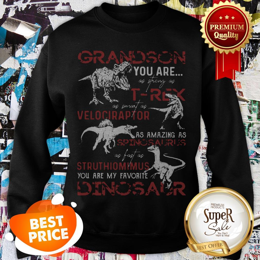 Nice Grandson You Are As Strong As T-Rex As Velociraptor Spinosaurus Sweatshirt