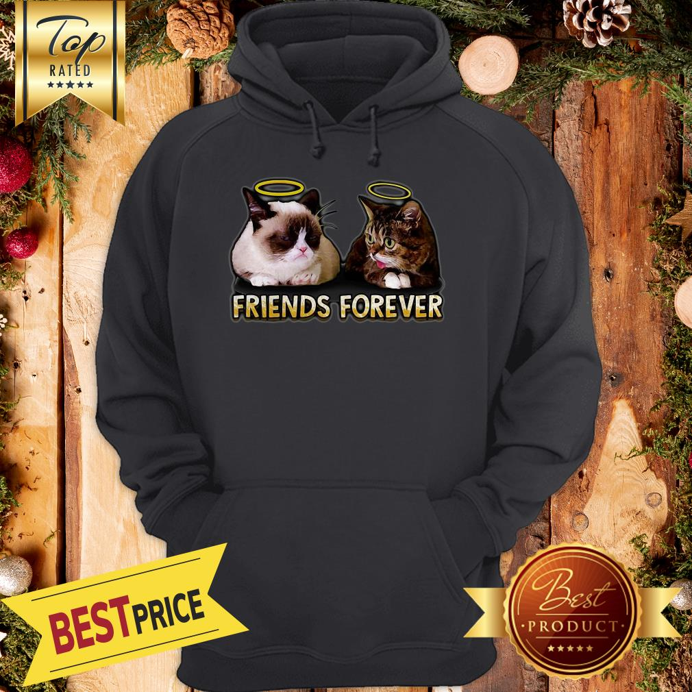 Nice Grumpy And Lil Bub Friends Forever Hoodie