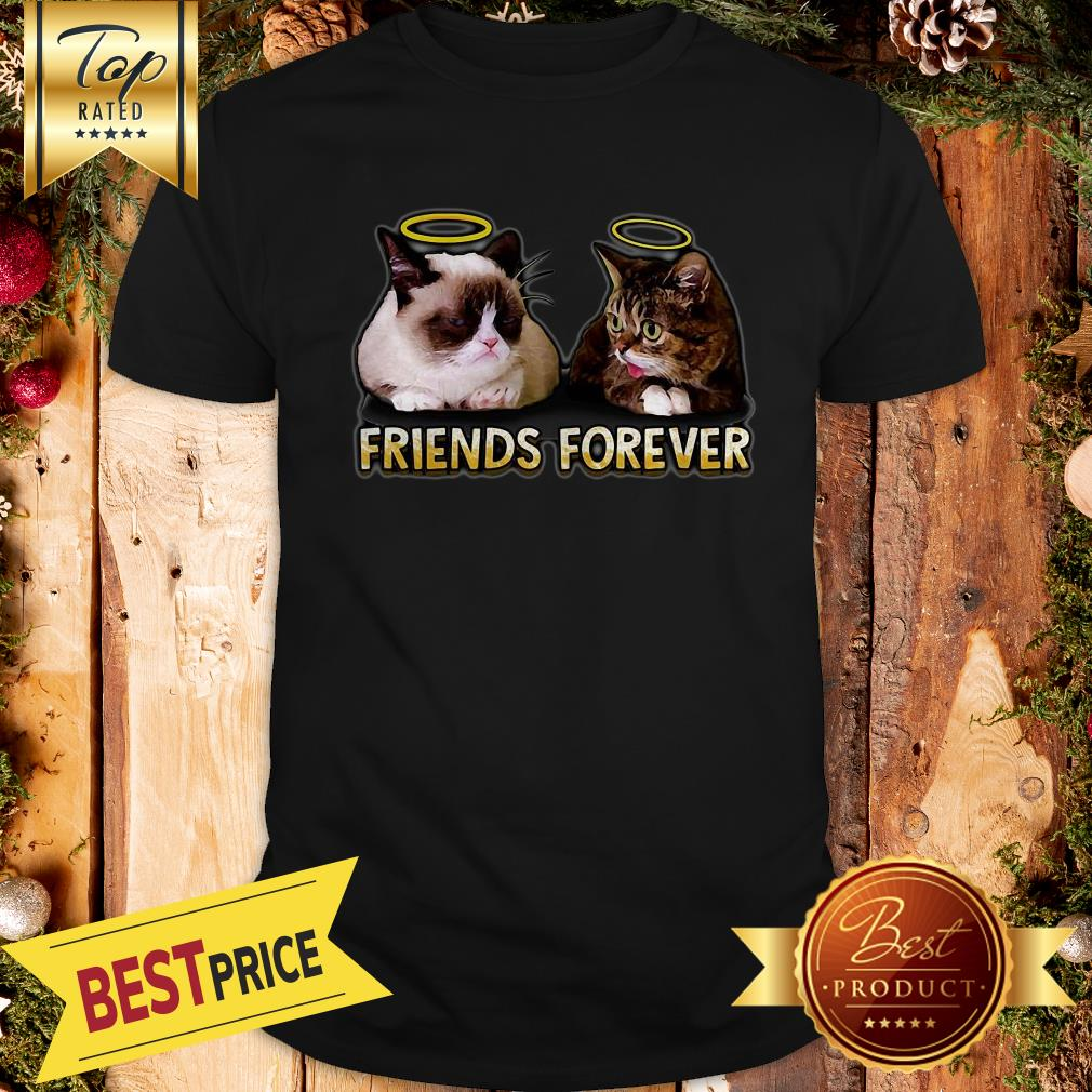 Nice Grumpy And Lil Bub Friends Forever Shirt