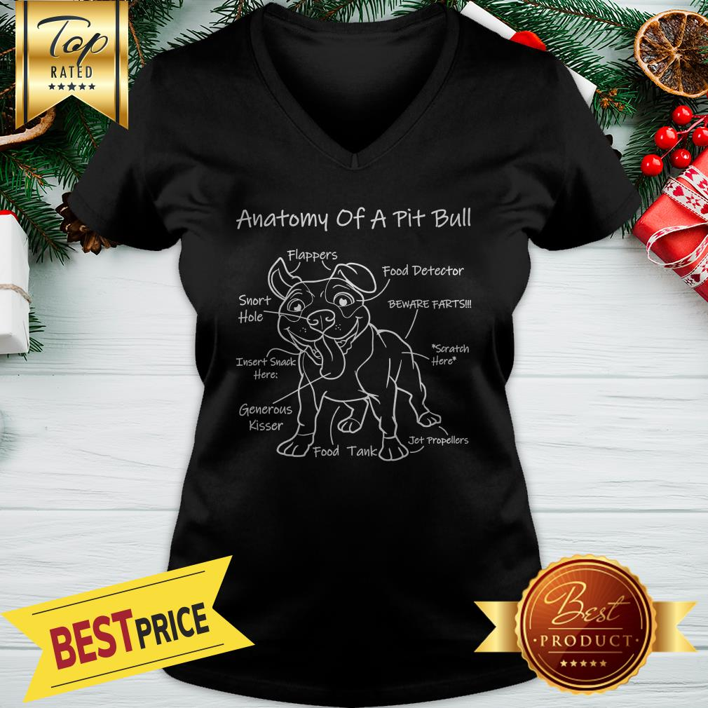Official Anatomy Of A Pit Bull V-neck
