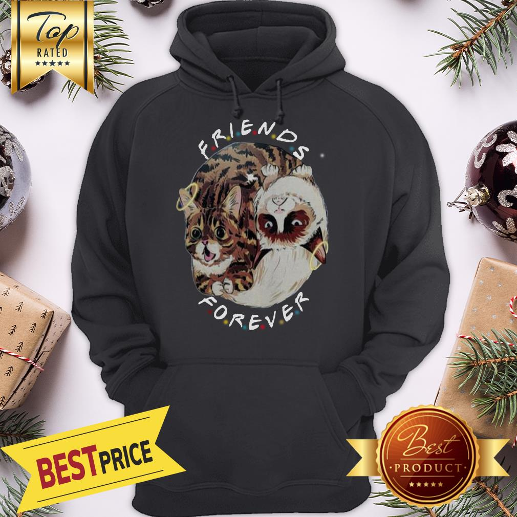 Official Lil Bub And Grumpy Cat Friends Forever Hoodie