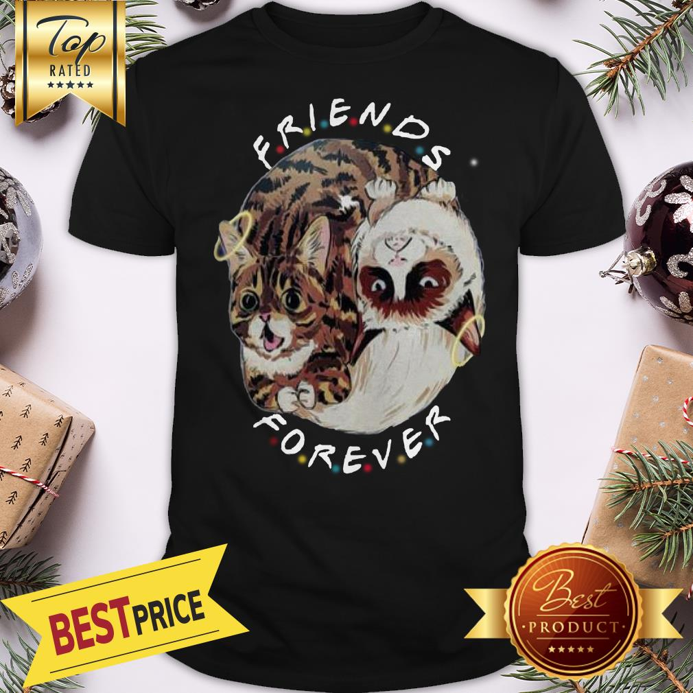 Official Lil Bub And Grumpy Cat Friends Forever Shirt