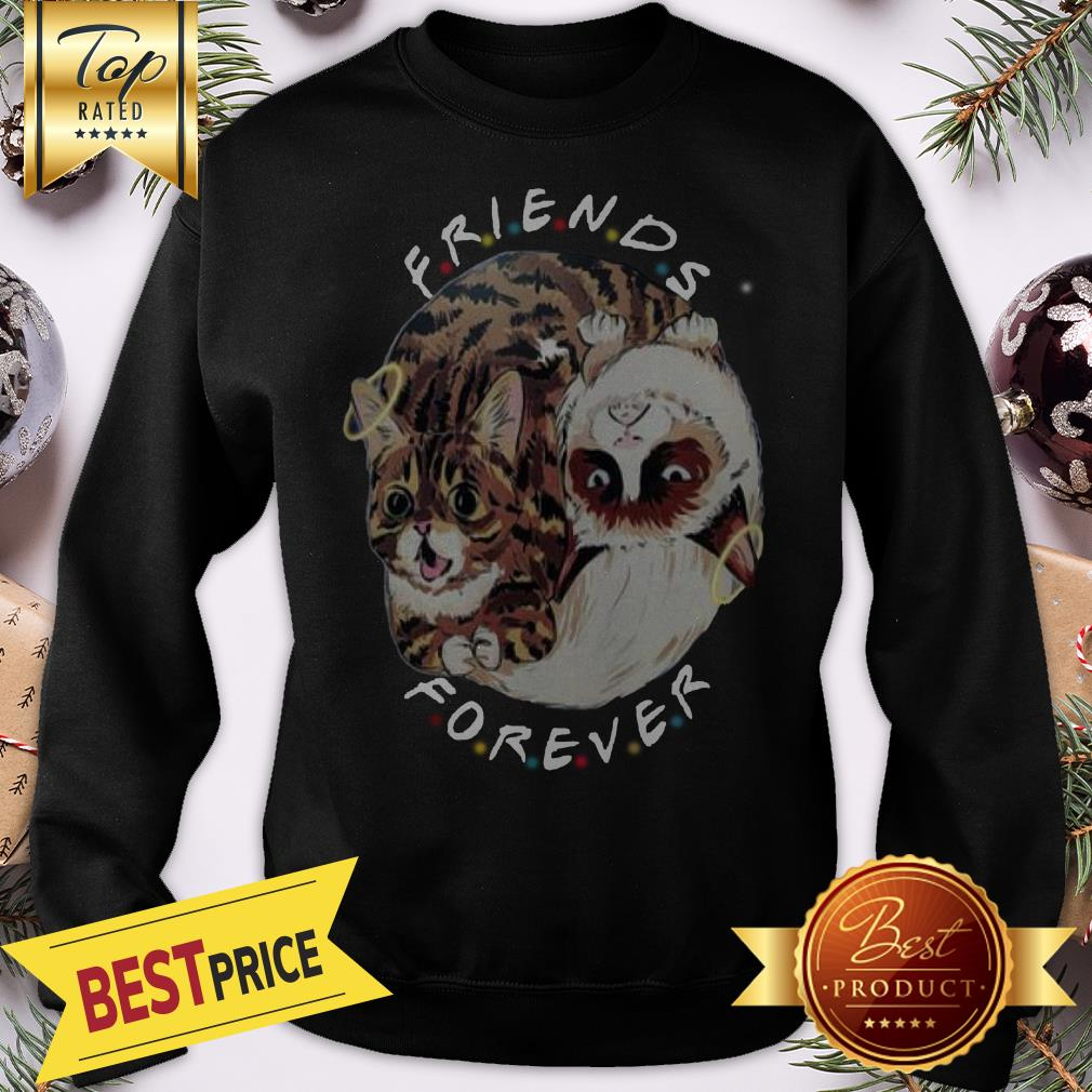Official Lil Bub And Grumpy Cat Friends Forever Sweatshirt