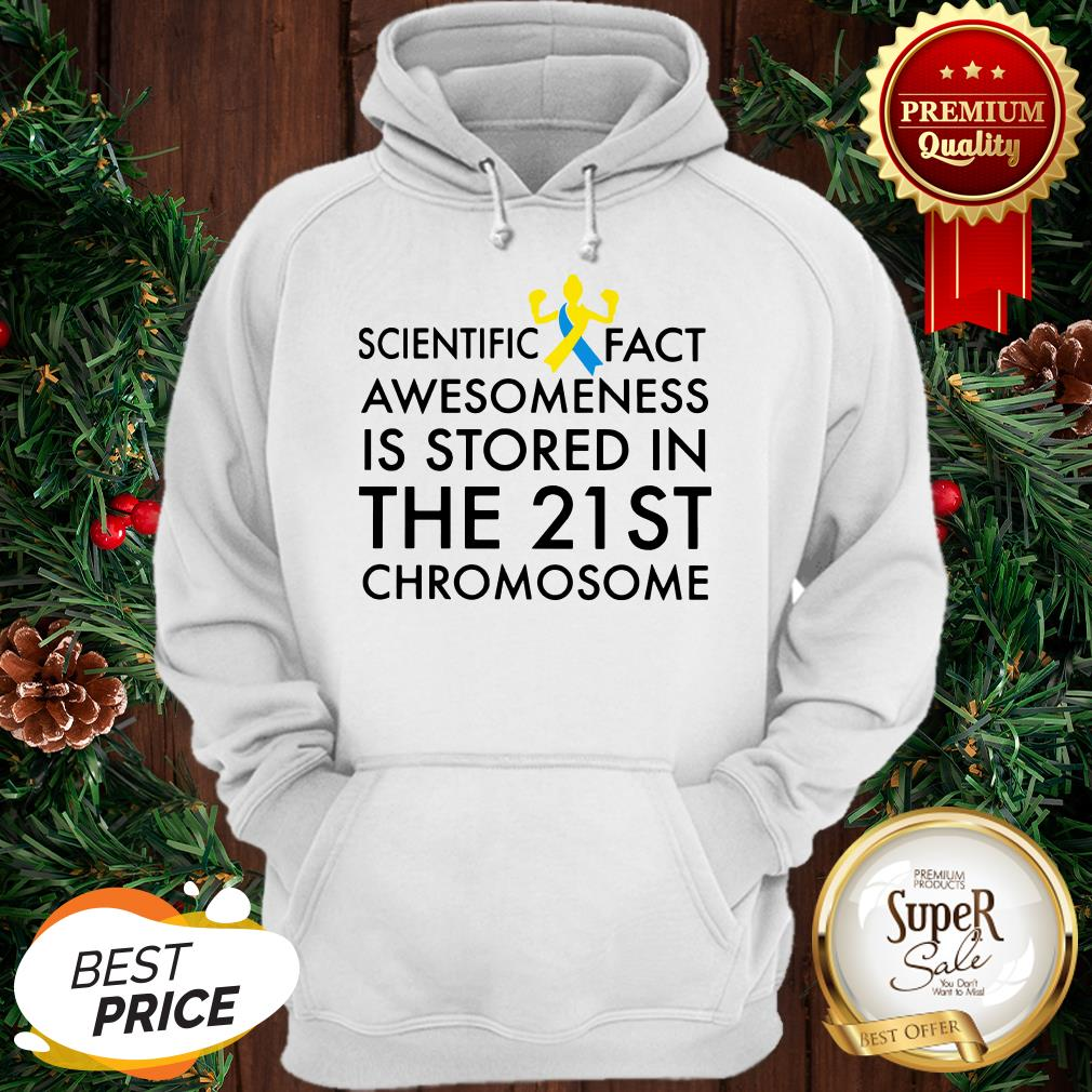 Scientific Fact Awesomeness Is Stored In The 21st Chromosome Hoodie