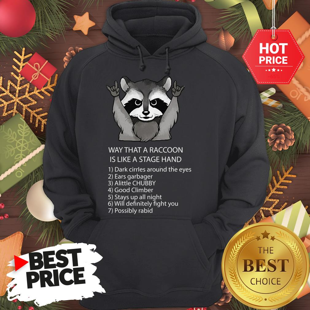 Ways That A Raccoon Is Like A Stagehand Hoodie
